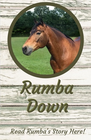 Learn about Rumba