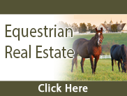 Equestrian Search Button